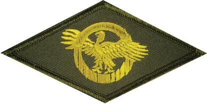We Need a Universal Veteran Symbol for America's Recent