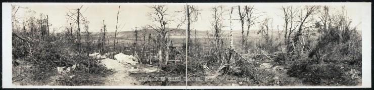 Belleau Wood, LOC